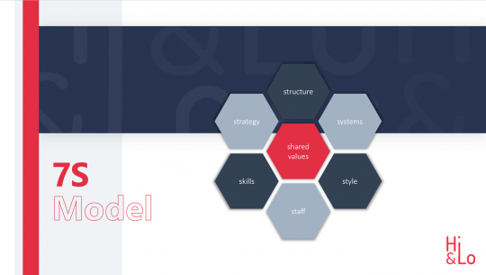 7-S Model Hexagon
